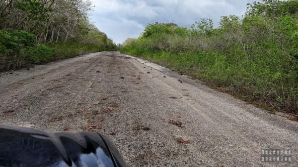 Droga z Caleta Buena - Kuba