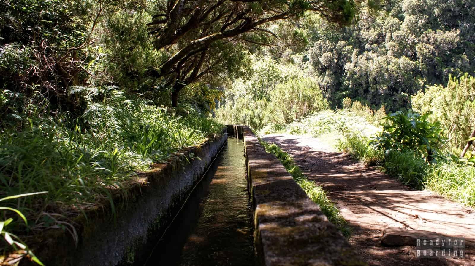 Madera - Lewady (galeria zdjęć)