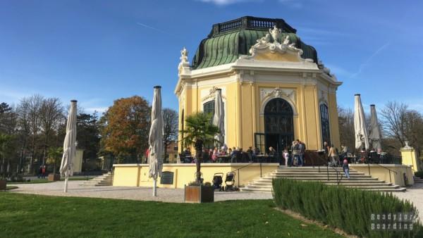 Zoo i pałac Schonbrunn - Wiedeń - Austria