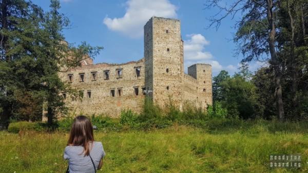 Zamek w Drzewicy - zamki województwa łódzkiego