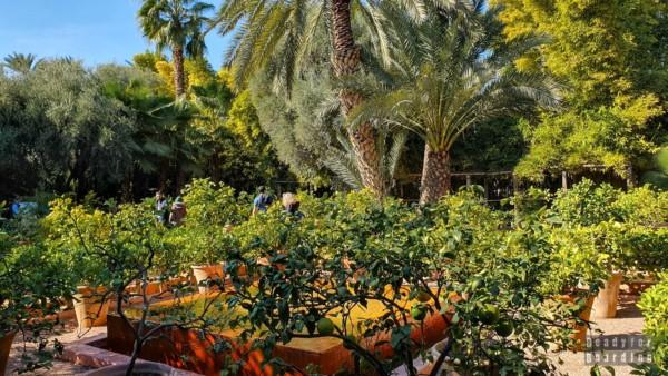 Ogród Majorelle, Marrakesz - Maroko